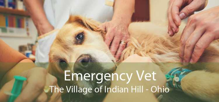 Emergency Vet The Village of Indian Hill - Ohio