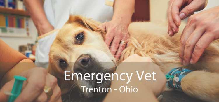 Emergency Vet Trenton - Ohio