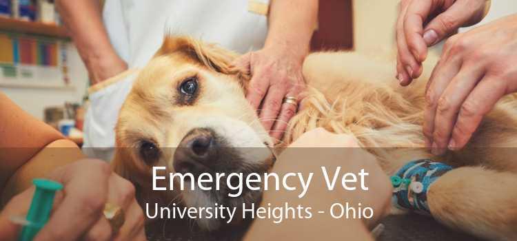 Emergency Vet University Heights - Ohio