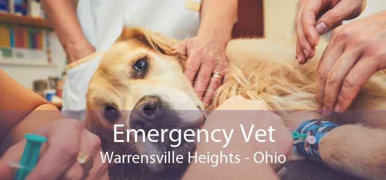 Emergency Vet Warrensville Heights - Ohio