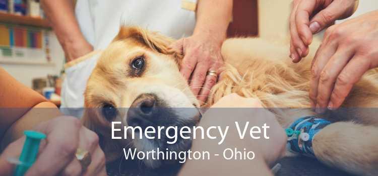 Emergency Vet Worthington - Ohio