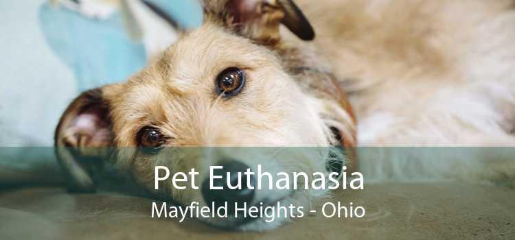 Pet Euthanasia Mayfield Heights - Ohio