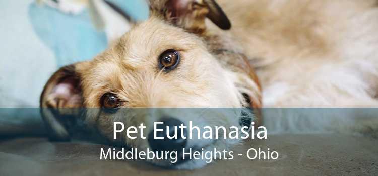 Pet Euthanasia Middleburg Heights - Ohio