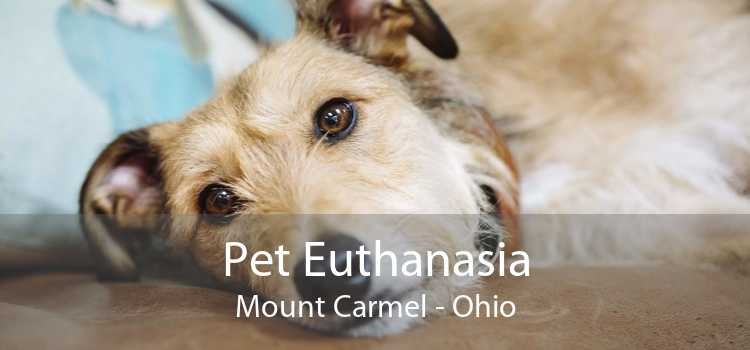 Pet Euthanasia Mount Carmel - Ohio