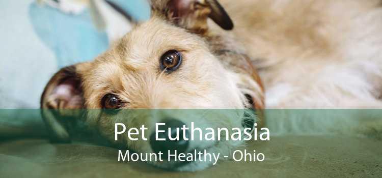 Pet Euthanasia Mount Healthy - Ohio