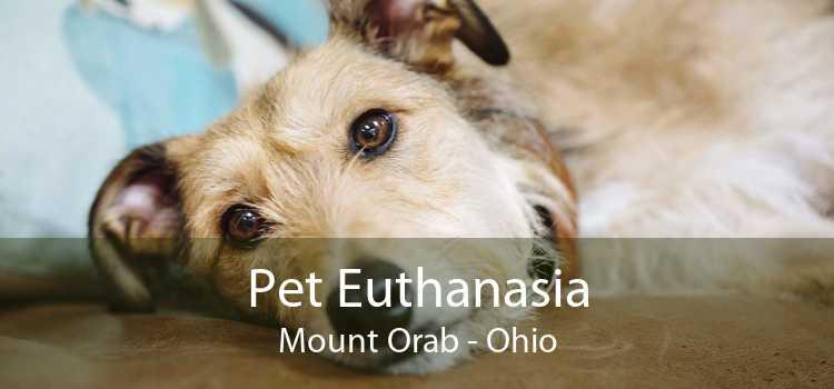 Pet Euthanasia Mount Orab - Ohio