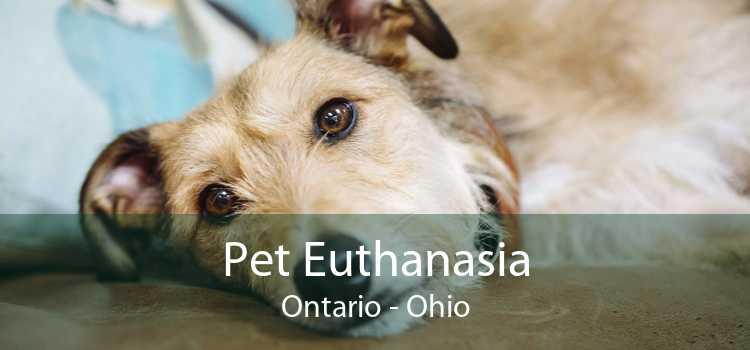 Pet Euthanasia Ontario - Ohio