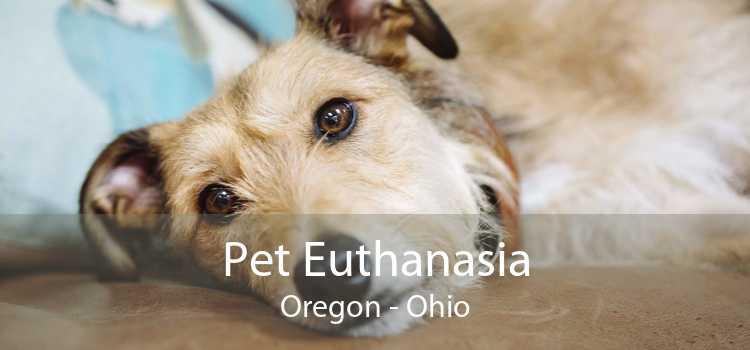Pet Euthanasia Oregon - Ohio