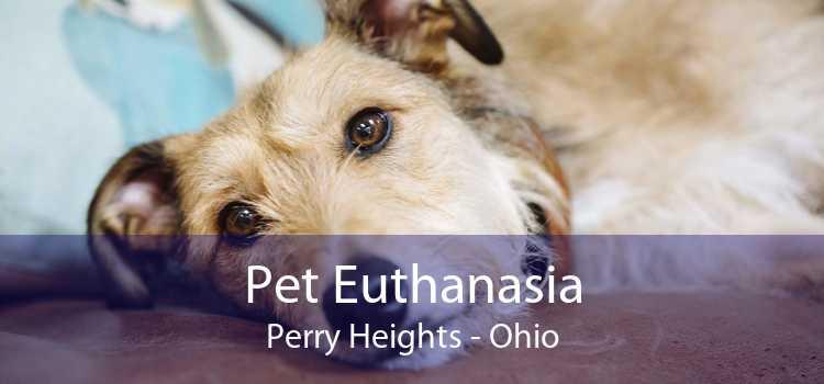 Pet Euthanasia Perry Heights - Ohio