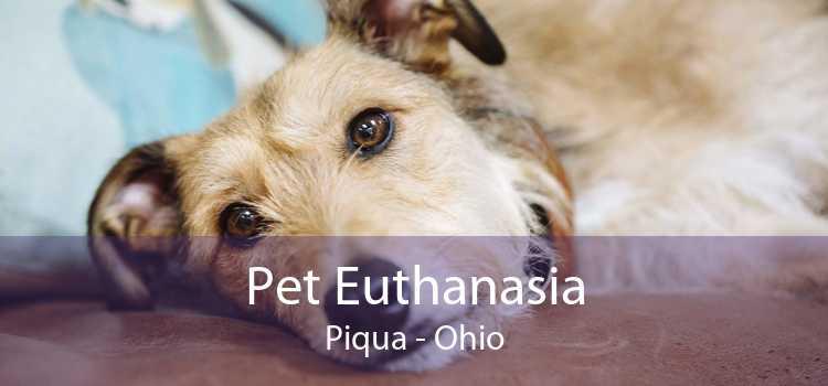 Pet Euthanasia Piqua - Ohio