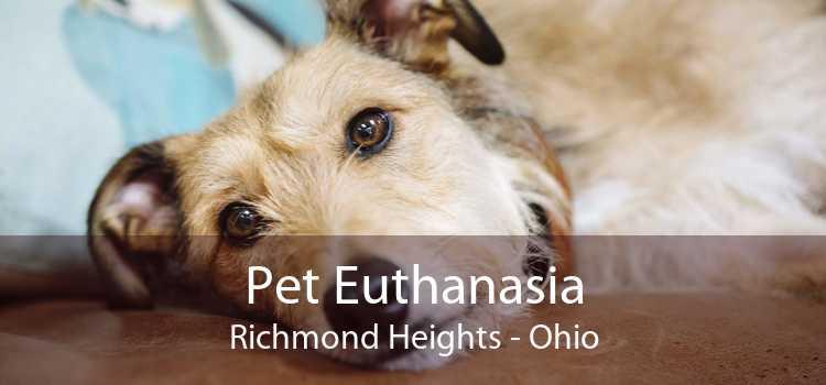 Pet Euthanasia Richmond Heights - Ohio