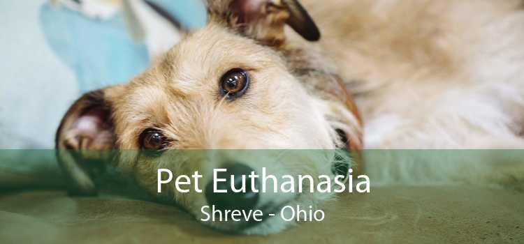 Pet Euthanasia Shreve - Ohio