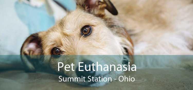 Pet Euthanasia Summit Station - Ohio