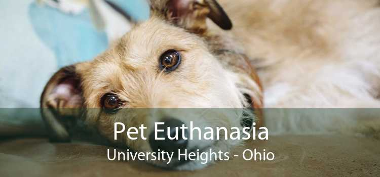Pet Euthanasia University Heights - Ohio