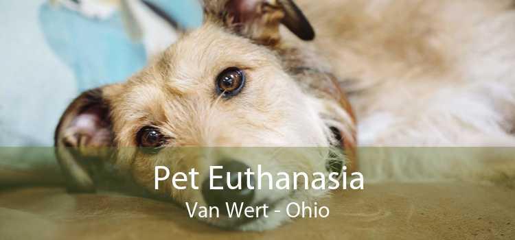 Pet Euthanasia Van Wert - Ohio