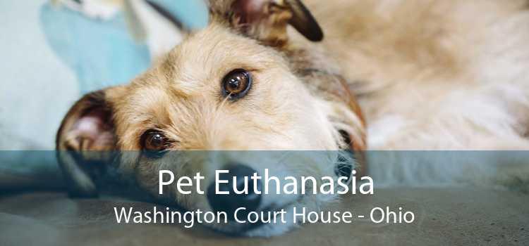 Pet Euthanasia Washington Court House - Ohio