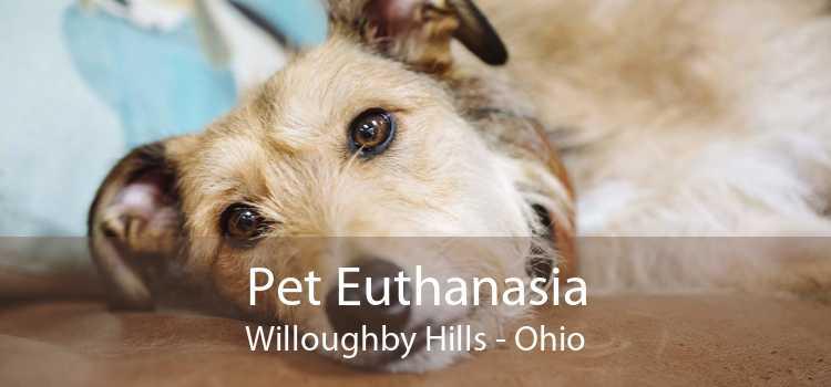 Pet Euthanasia Willoughby Hills - Ohio