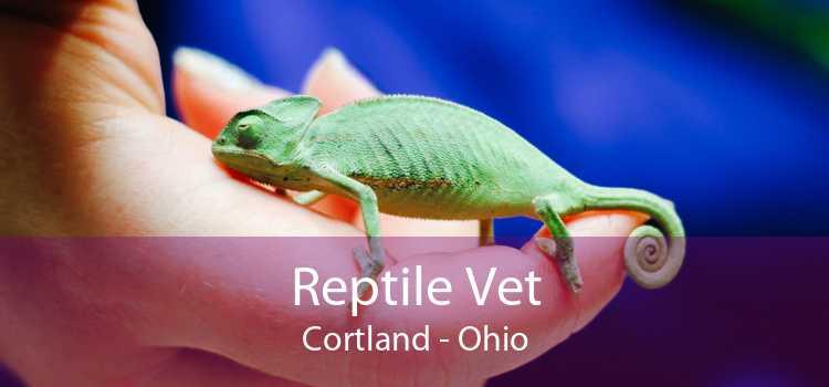 Reptile Vet Cortland - Ohio