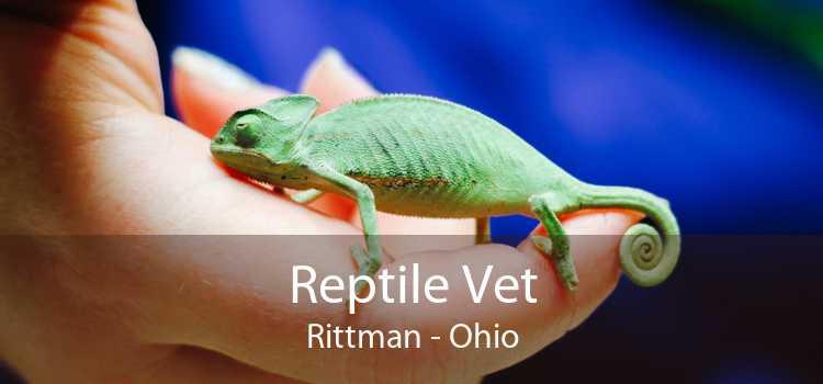 Reptile Vet Rittman - Ohio