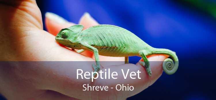 Reptile Vet Shreve - Ohio