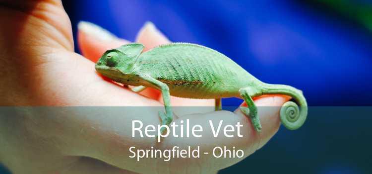 Reptile Vet Springfield - Ohio