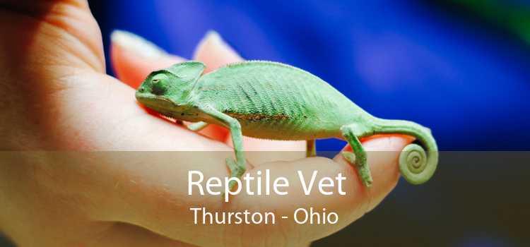 Reptile Vet Thurston - Ohio