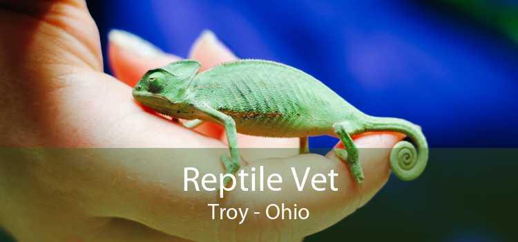 Reptile Vet Troy - Ohio