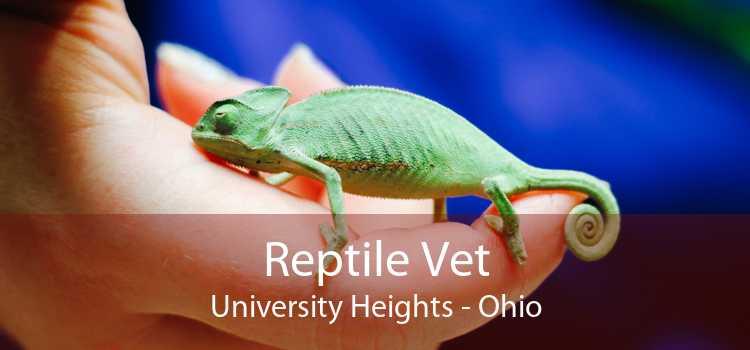 Reptile Vet University Heights - Ohio