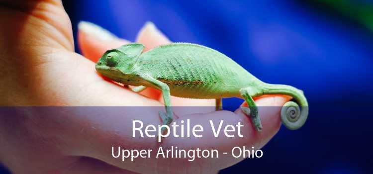 Reptile Vet Upper Arlington - Ohio