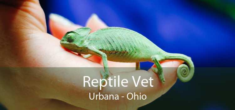 Reptile Vet Urbana - Ohio