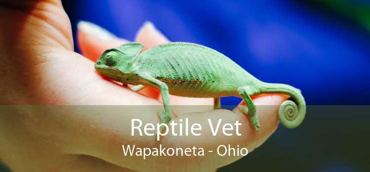 Reptile Vet Wapakoneta - Ohio
