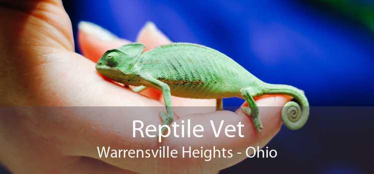 Reptile Vet Warrensville Heights - Ohio