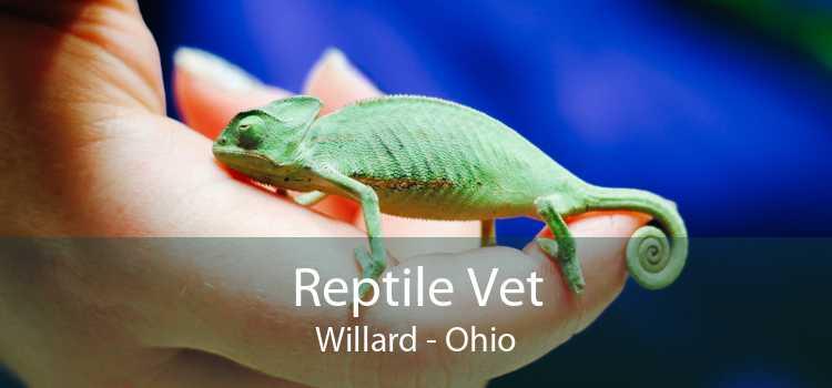 Reptile Vet Willard - Ohio