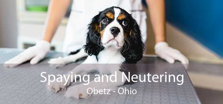 Spaying and Neutering Obetz - Ohio