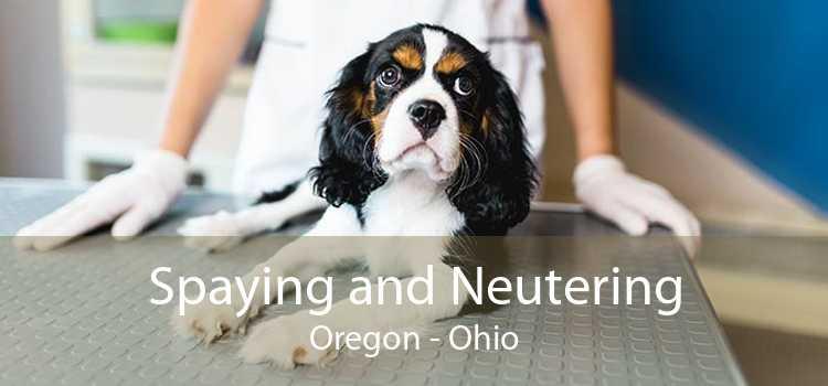 Spaying and Neutering Oregon - Ohio