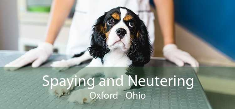 Spaying and Neutering Oxford - Ohio