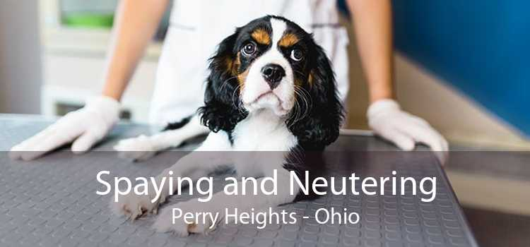 Spaying and Neutering Perry Heights - Ohio