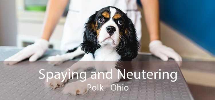 Spaying and Neutering Polk - Ohio