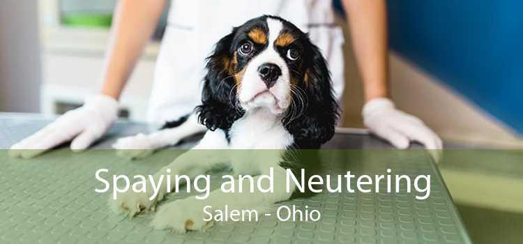 Spaying and Neutering Salem - Ohio