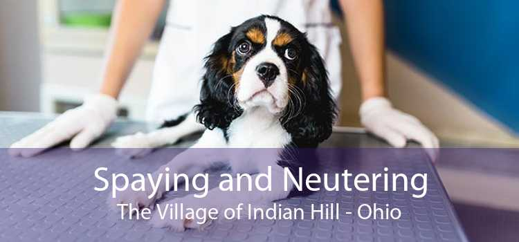 Spaying and Neutering The Village of Indian Hill - Ohio
