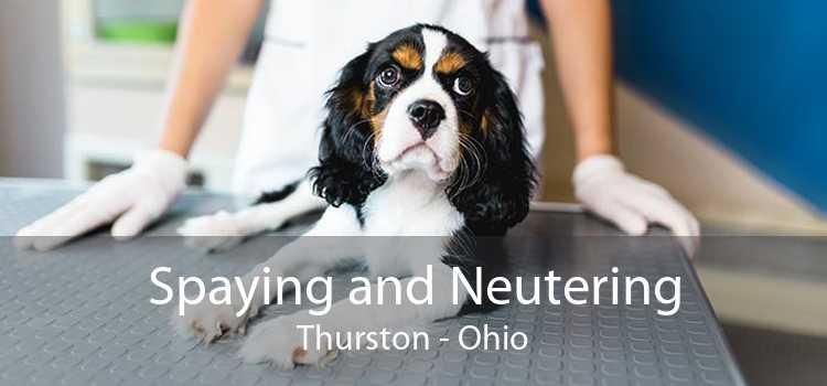 Spaying and Neutering Thurston - Ohio
