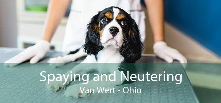 Spaying and Neutering Van Wert - Ohio