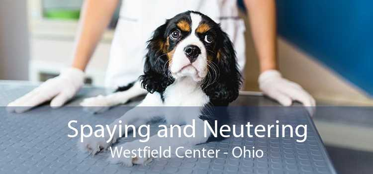 Spaying and Neutering Westfield Center - Ohio