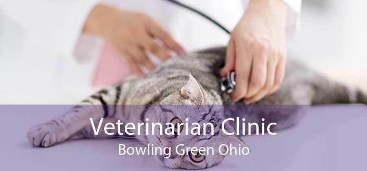 Veterinarian Clinic Bowling Green Ohio