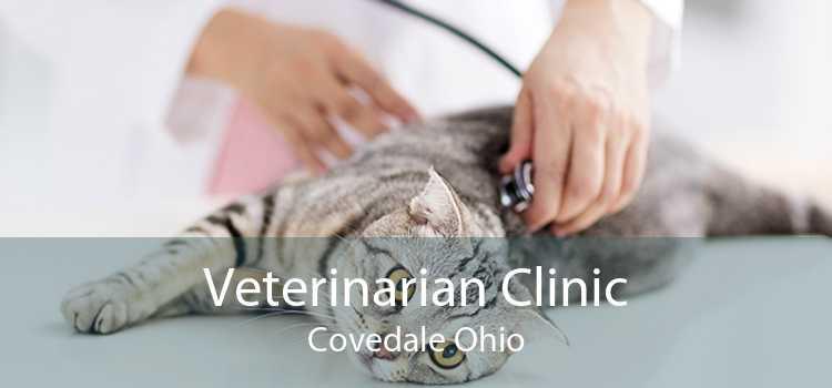 Veterinarian Clinic Covedale Ohio