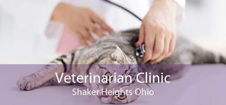 Veterinarian Clinic Shaker Heights Ohio