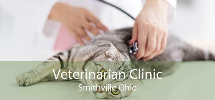 Veterinarian Clinic Smithville Ohio